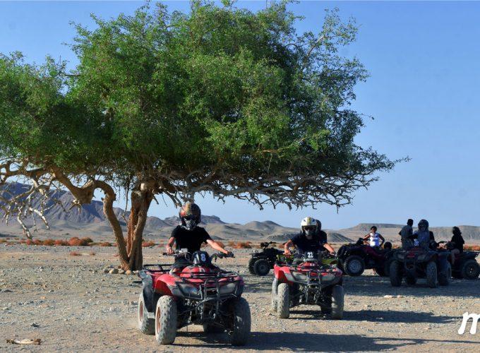 Egypt Tour Guide